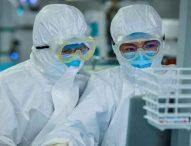 Coronavirus: ¿qué le hace el covid-19 a tu cuerpo?