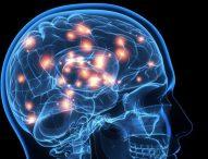 6 ejercicios que practica cada día la neurocientífica Wendy Suzuki para mejorar su fortaleza mental